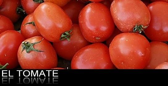 tomate-nutricionista-nmadrid